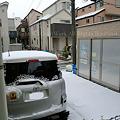写真: 積もる雪