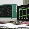 写真: 120229川崎競馬 雪のため中止