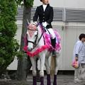 写真: 川崎競馬の誘導馬05月開催 藤Ver-120516-01-large