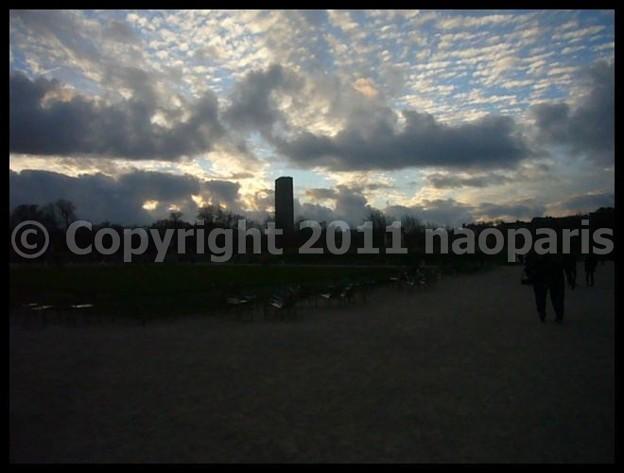 写真: P2940417