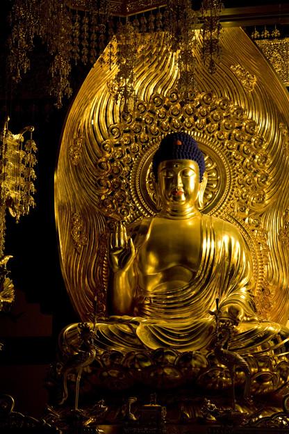 「仏像彫刻」 念佛宗(念仏宗)無量寿寺 佛教之王堂  社寺仏教美術 nenbutsushu069