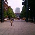 写真: 靖国神社参道