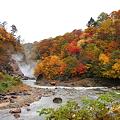 Photos: 葛根田渓谷~滝ノ上温泉付近の紅葉・4