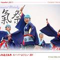 写真: 上總組_25 - 原宿表参道元氣祭 スーパーよさこい 2011