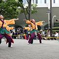 朝霞翔舞_04 - 原宿表参道元氣祭 スーパーよさこい 2011