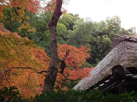 京都 178