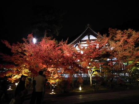 京都 923