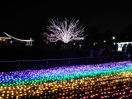 昭和記念公園 127