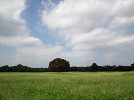 昭和記念公園 168