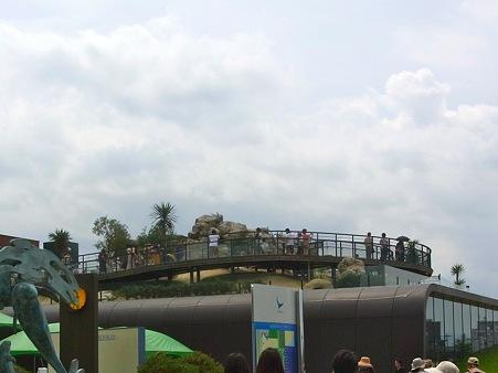 20110815 海響館 フンボエリア01