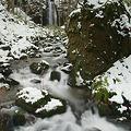 写真: 初冬の奥入瀬