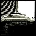 Photos: 20111002_111503_0
