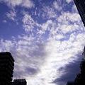 写真: 2011-08-19の空