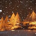 Photos: 雪の兼六園ライトアップ