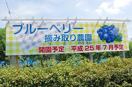 2011年08月07日_DSC_0998