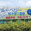 Photos: 2011年08月07日_DSC_0998