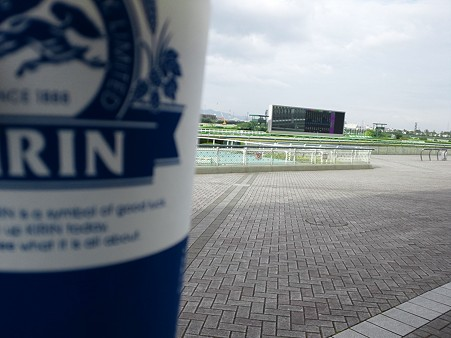 阪神競馬場でわなびう