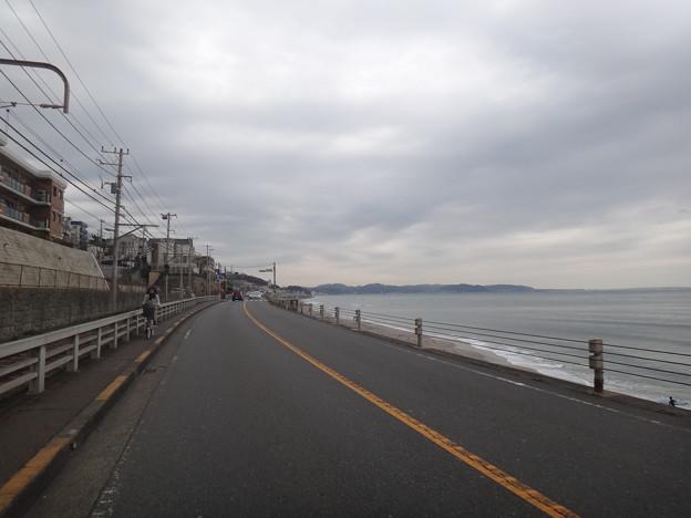 写真: DSC00257.JPG