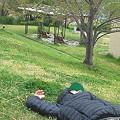 Photos: 死んだように寝るおっさん