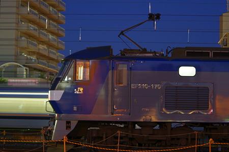 IMGP5577