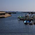 写真: 静かな漁港