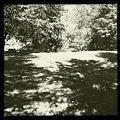 写真: Isolation 10-9-11