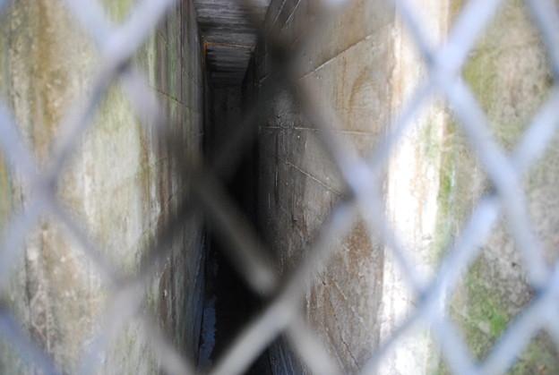 Photos: Small Hallway 3-11-12