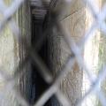 Small Hallway 3-11-12