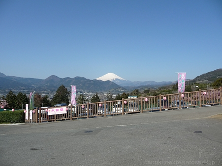 120329-松田山から富士山 (11)