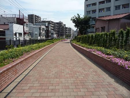 110622-東横廃線 東白楽→反町 (18)