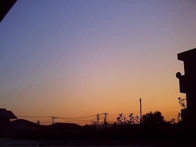 PICT0101