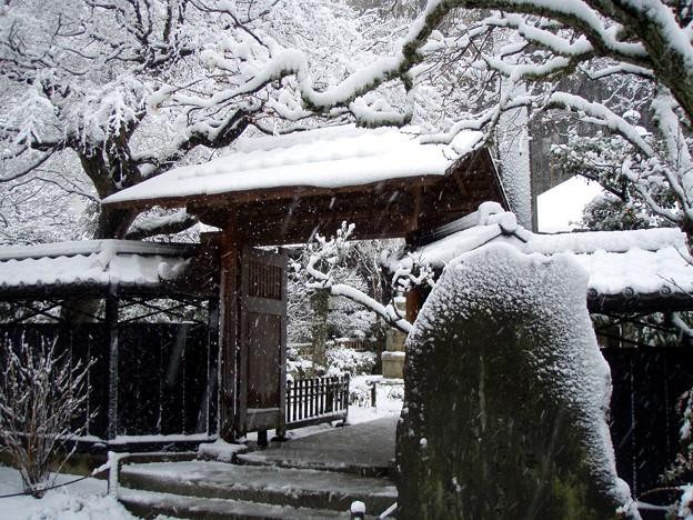 Photos: 東慶寺本堂前20120229