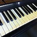 写真: 象牙鍵盤