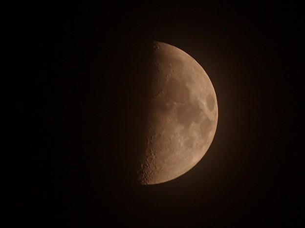 Photos: 4月29日上弦の月