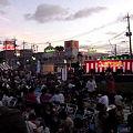 写真: 2011_矢切84