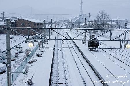 朝の聖高原駅 NEX-5 E30mm F3.5 Macro