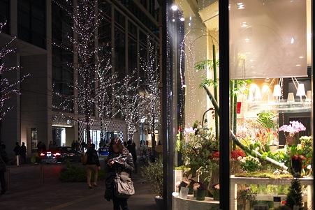 2011.12.29 丸の内仲通り 花屋の店先