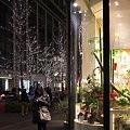 Photos: 2011.12.29 丸の内仲通り 花屋の店先