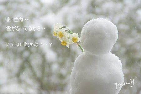 雪の日・・