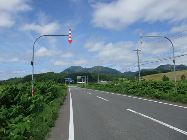 Photos: てしお