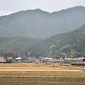 Photos: 田舎を走る福知山線
