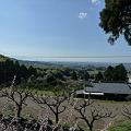普光寺より見る大牟田市