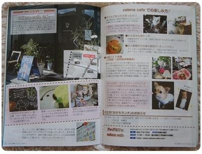WAN☆NYAN TIMES 1月号