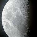 Photos: 今夜の月(上弦)