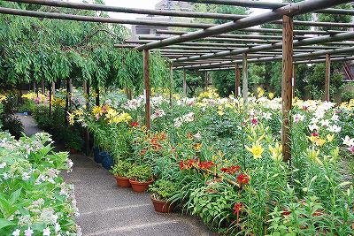 写真: 庭園内