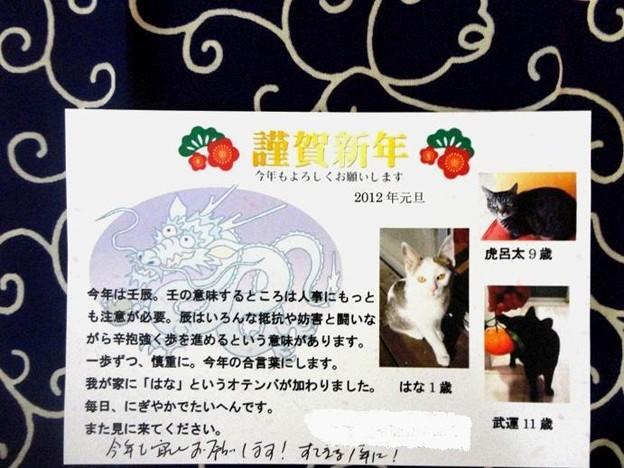 NewYearCard_Kazume-san-Jan2012